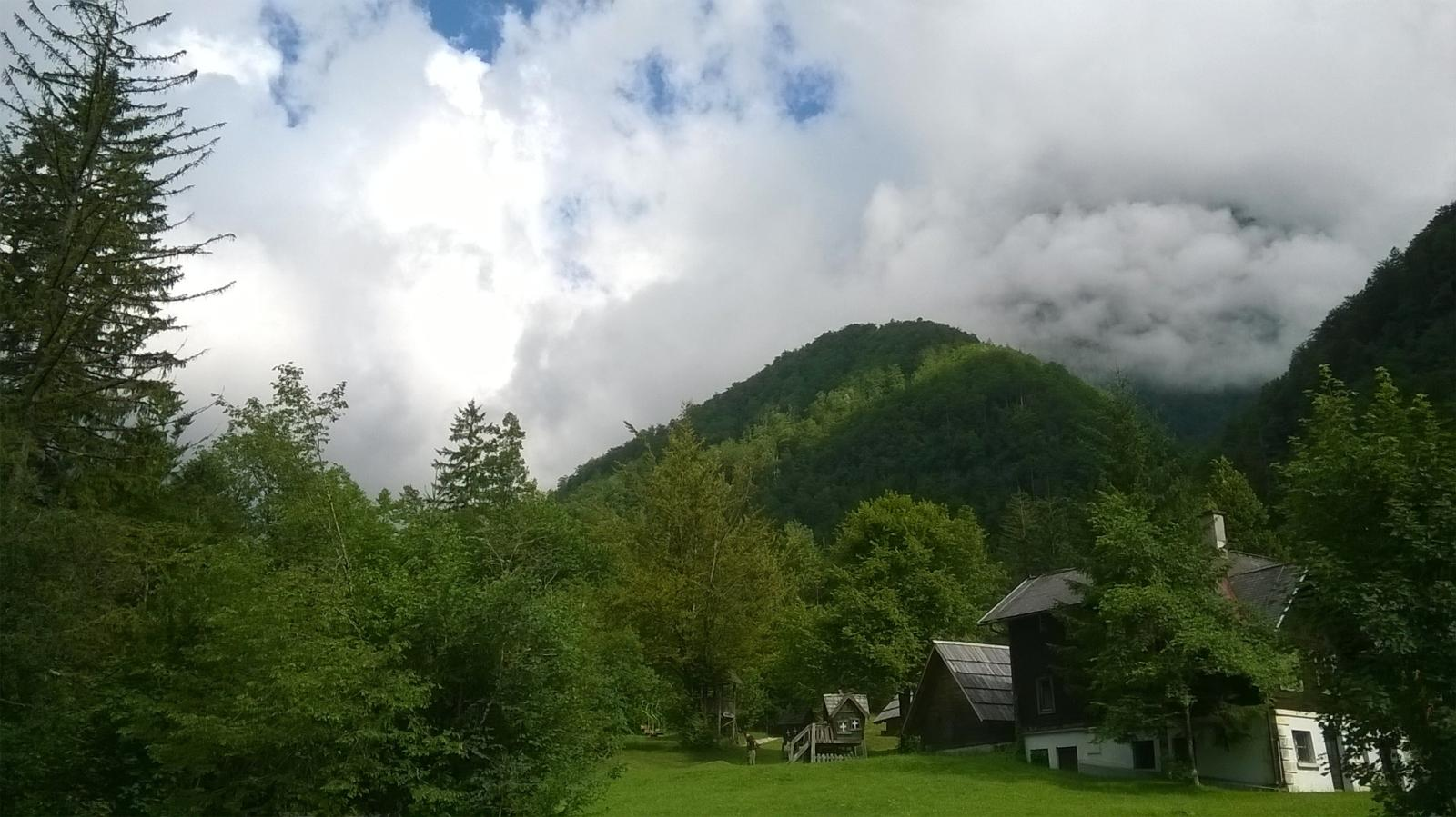 Photo of looking hopefully up from Kamniška Bistrica